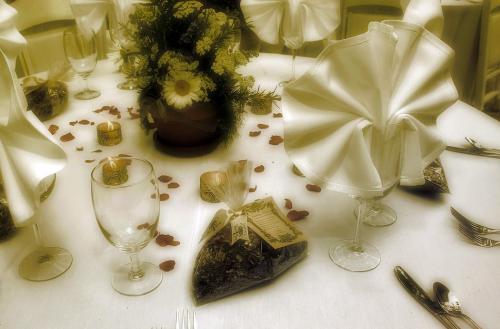 Wedding Table Dinner Setting Fredericksburg Texas Wedding
