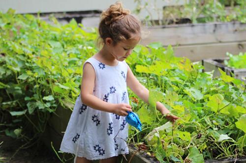 kids portraits little girl in flower garden outdoors san antonio